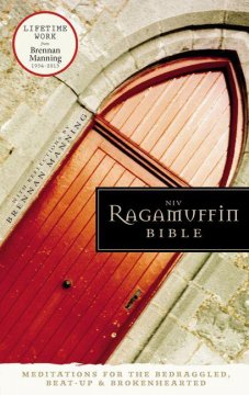 The NIV Ragamuffin Bible Review