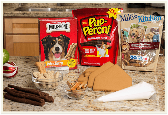 Amazing DIY Holiday Ideas, Tips, Tools and more for your Furry Family Members